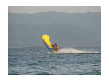 Cina Lake Towable Inflatables Flying Fish Boat Tube for Outdoor Acctivity pabrik