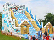 Hot Summer Water Games, Giant Inflatable Slide In Winter Snow Style pemasok